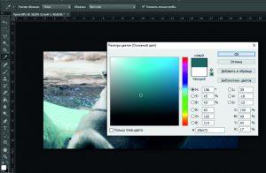 скопировать цвет фотошоп