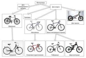 Как выбрать велосипед